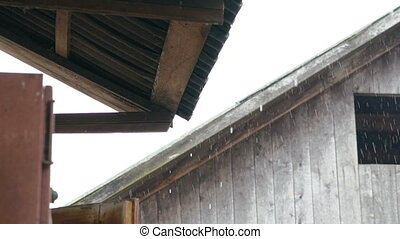 Rain. Look under wood roof in home