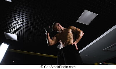 Handsome muscular man working out with dumbbells. Bottom...