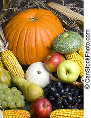 Harvest Fruit - An assortment of Fall fruits fresh from the...