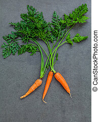 Fresh carrots bunch on dark concrete background. Raw fresh...