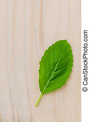 Alternative medicine fresh holy basil leaves on wooden...
