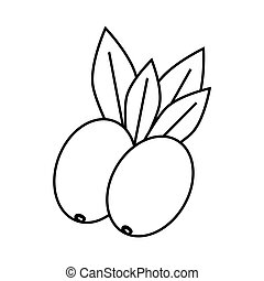 Olive plant icon Organic and Healthy food design Vector...