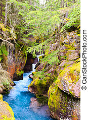 Avalanch Creek - Glacier National Park - Landscape waterfall...