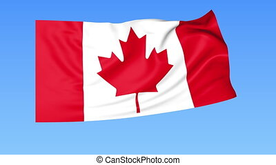 Waving flag of Canada, seamless loop. Exact size, blue background. Part of all countries set. 4K ProRes with alpha