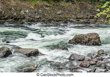 Snoqualmie River Rapids 2 - White water rushes past boulders...