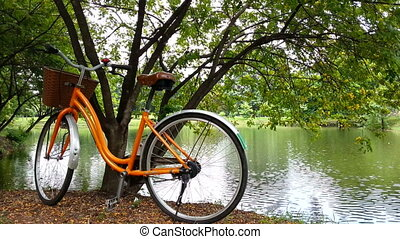 Public bicycle at park - Public bicycle at the park in...