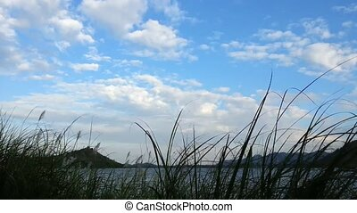 Lake and mountains behind grass - Lake and mountains with...