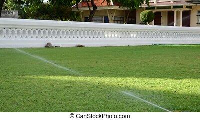 Sprinkler on grass field - Watering sprinkler on grass field...