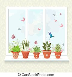 different herbs planted in ceramic pots on a windowsill for your