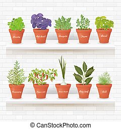 organic gourmet collection of different herbs planted in...