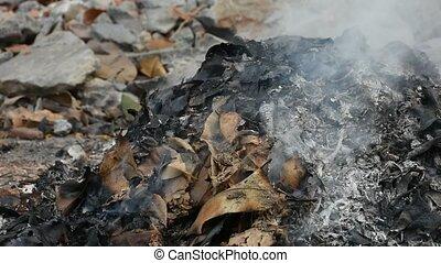 Burning dry leaves