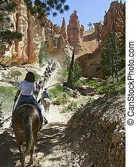 Mule Ride, Bryce Natioanl Park, UT - A mule caravan of...