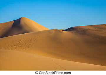 The twists of orange sand dunes - Sunny morning in a...