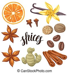Various stylized spices set. Illustration of anise, cloves, vanilla, ginger and cinnamon