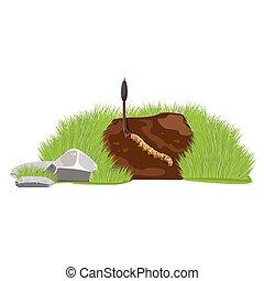 Dong Chong Xia Cao. - illustration. Cordyceps sinensis.Dong...