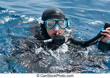 diver ready to dive  - diver in water ready to dive