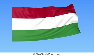 Waving flag of Hungary, seamless loop. Exact size, blue background. Part of all countries set. 4K ProRes with alpha