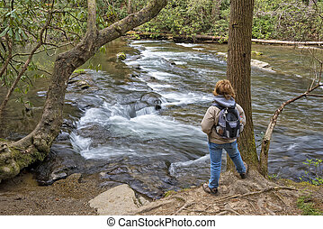 Hiking Along Abrams Creek In Cades Cove - Hiking Along...