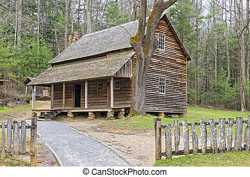 The Henry Whitehead Cabin, at Cade's Cove