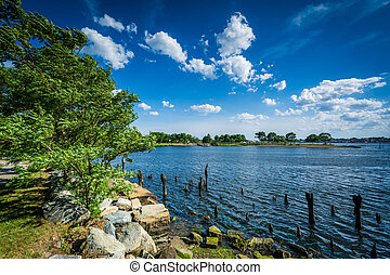 Pier pilings in the Seekonk River, in Providence, Rhode...