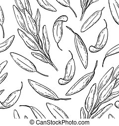 Sage vector drawing seamless pattern. Isolated sage plant with leaves.