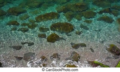 Water Surface back - Sea coast Water Surface background...