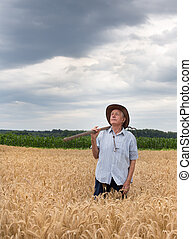 Senior peasant in golden barley field - Agricultural and...