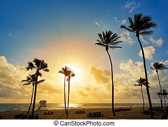 Fort Lauderdale beach sunrise Florida US - Fort Lauderdale...