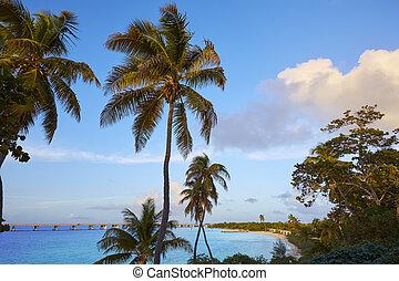 Florida Keys beach Bahia Honda Park US - Florida Keys beach...