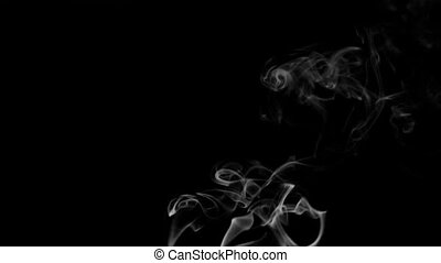 Footage white smoke on black background. HD video. 120fps