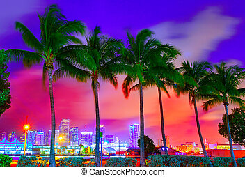 Miami skyline sunset with palm trees Florida - Miami skyline...