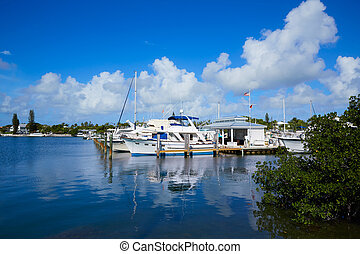Key West Florida marina Garrison Bight Florida - Key West...