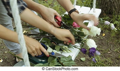 women's hands are cut flowers red and white roses, prepare...