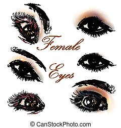 A collection or set of beautiful realistic female eyes for design.eps