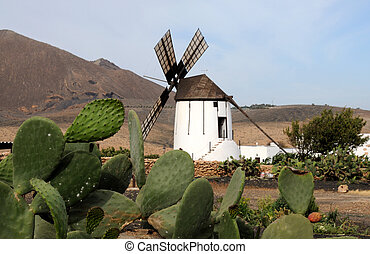 Landscape with old windmill. Canary Island Fuerteventura,...