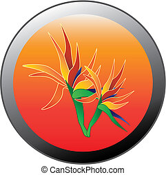 Bird Of Paradise Flower In A Circle
