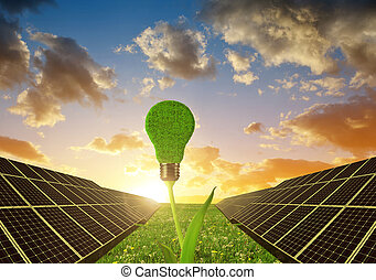 Clean energy concept - Solar panels with lightbulb on plant...