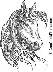 Arabian horse with long forelock, sketch style - Engraving...