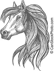 Profile portrait of purebred andalusian mare icon - Sketched...