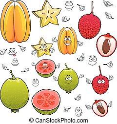 Cartoon carambola, lychee and apple guava fruits - Smiling...