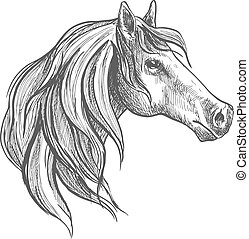 Sketch of a horse of american quarter breed - Powerful...
