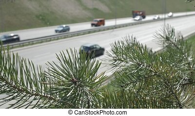 Highway. Green plants. - A four-lane highway. In the...