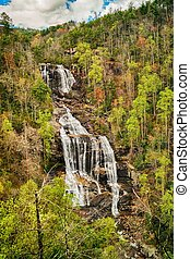 Spring at Whitewater Falls - Whitewater Falls, North...