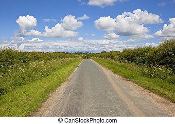 rural highway in summer