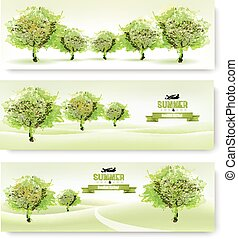 Three nature summer banners. Vector.