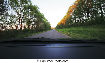 Car point-of-view driving right on road., alley. Look...