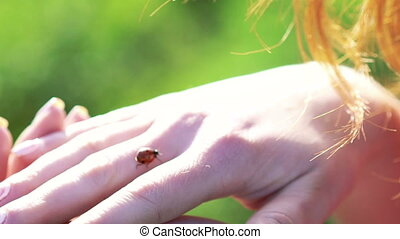 Ladybug goes on woman's hand in full HD