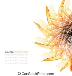 Floral abstract vector background. orange and black sunflower