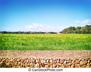 Idyllic landscape in springtime, with stone wall and flower...