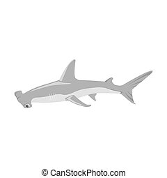 Hammerhead Shark Icon - Hammerhead shark icon isolated on...